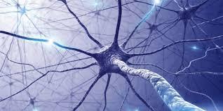 Nueva terapia en Alzheimer
